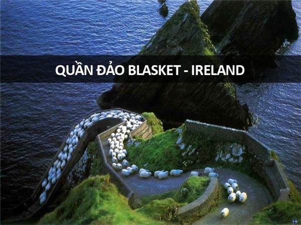 Chỉ có dân Ireland mới hiểu thế nào là tắc đường trên đảo.