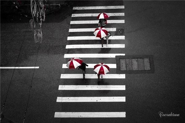 Cơn mưa bất chợt.Ảnh: Cao Anh Tuấn