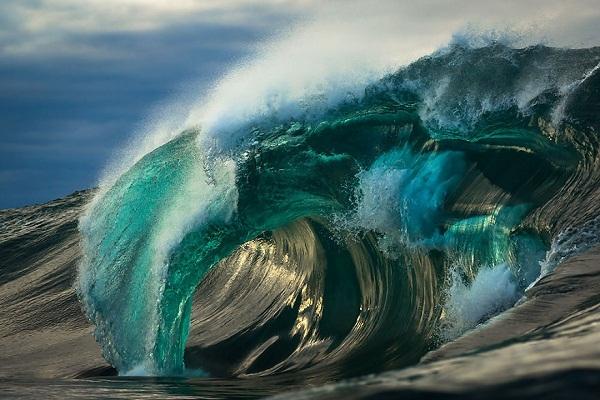 Matt Burgess là một nhiếp ảnh gia chuyên chụp ảnh biển.