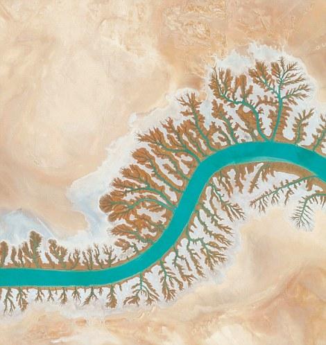 Hệ thống thoát nước ở vịnh Lagoon Shadegan Musa có hình dạng giống như một con rết vớihệ thống chân ngoằn ngoèo tỏara khắp nơi.