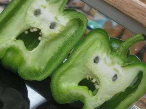 Ai nỡ lòng nào đem cắt đôi những trái ớt xanh để chúng khóc lóc ỉ ôi thế này vậy?