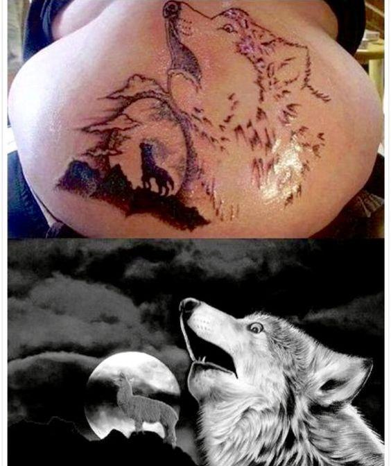 """Hóa ra là sói thật chứ không phải """"sói nhồi bông""""."""
