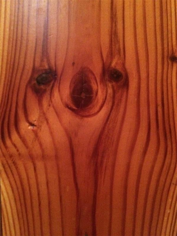 Nhìn xem, tấm gỗ này có đường gân như mặt của một con lười!(Ảnh: BuzzFeed)
