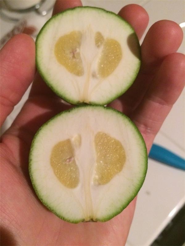 """Ngay cả trái cây mà cũng """"sống lỗi"""" thế này thì """"cạn lời"""" thật.(Ảnh: BuzzFeed)"""