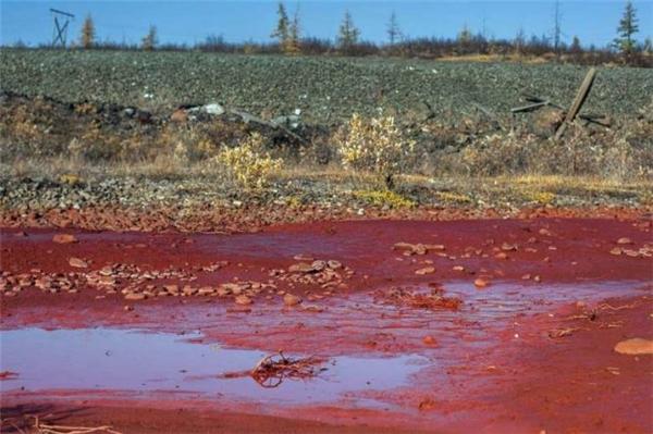 sông máu