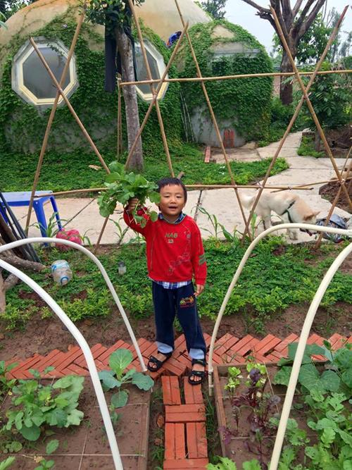 Ngôi nhà nấm độc đáo này là quà anh Quỳnh dành tặng cho con trai. (Ảnh: Theo Thanh niên)