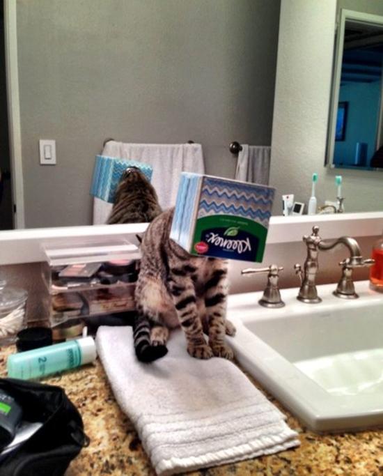 9. Quý khách rửa tay xong, vui lòng đóng phí phục vụ.