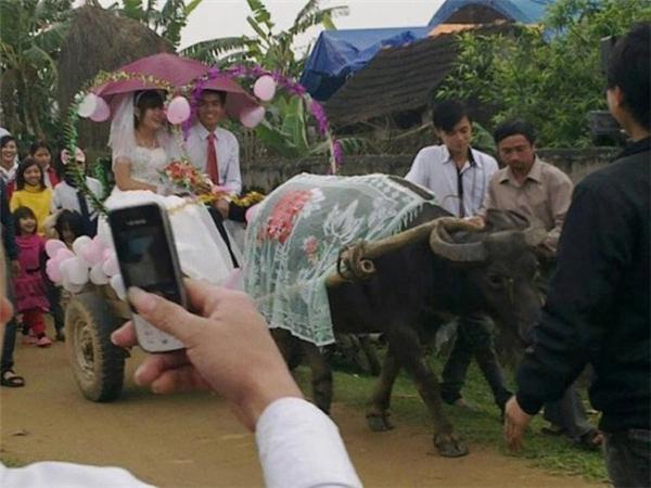 """Đám cưới đúng chuẩn """"em ở đâu anh phi trâu tới đón"""" ở Nam Đàn, Nghệ An cũng một thời""""gây bão"""" cộng đồng."""