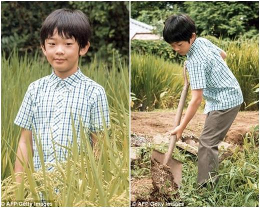 Hình ảnh giản dị của Hoàng tử Hisahito trong dịp sinh nhật thứ 10.