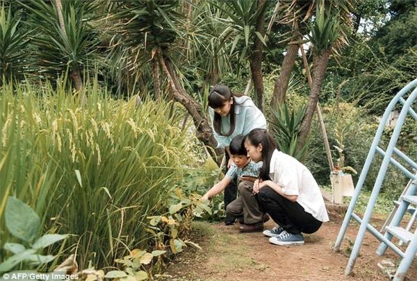 Hoàng tử Nhật học trường bình dân, tự tay cuốc đất khiến cả thế giới ngưỡng mộ
