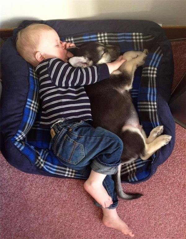 Chơi cả ngày rồi, hai anh em mình cùng ngủ lấy sức để tối còn quậy hơn nữa nhé.