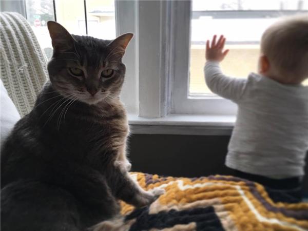 Nàythằng nhóc kia, không thấy chị Chloe đang buồn hay sao mà cứ tò tò trông ra ngoài cửa vậy?!