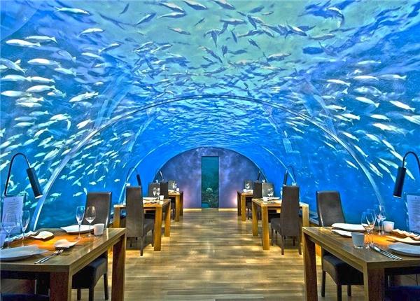 Đến 11 khách sạn dưới nước này rồi, bạn sẽ không muốn về nhà nữa