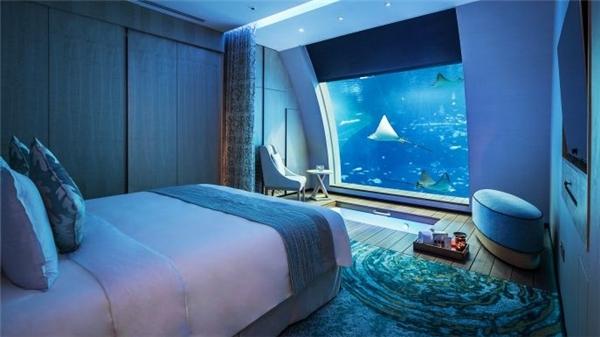 Và khi vào bên trong, bạn sẽ hoàn toàn choáng ngợp bởi cửa sổ vuông nhìn thẳng ra công viên hải dương học lớn nhất thế giới với hơn 40.000 loài cá – Ocean Suites.(Ảnh: Internet)