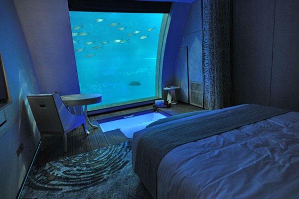 Đi du lịch mà gặp căn phòng thế này thì có lẽ nằm dài trong phòng cả ngày ngắm cá bơi cũng không thấy chán!(Ảnh: Internet)
