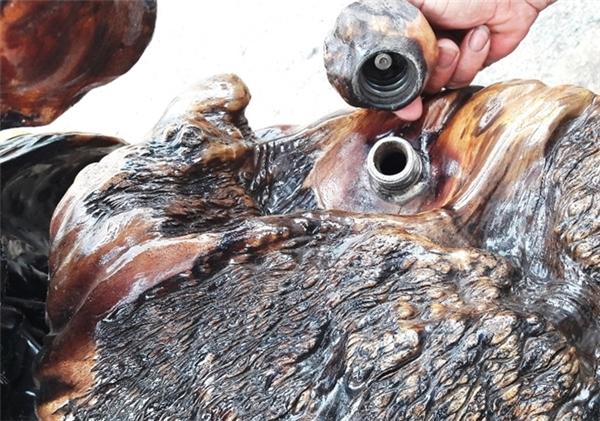 Trầm trồ thán phục trước chiếc mô tô handmade được làm từ gốc cây