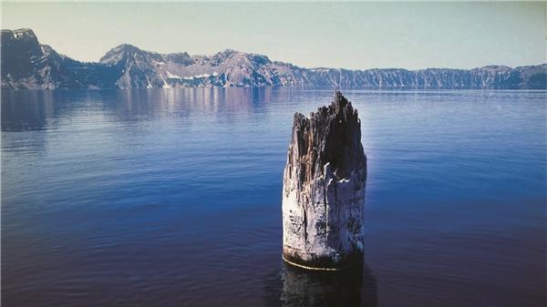 Khúc cây nổi trên mặt hồ có khả năng gọi bão một cách huyền bí?