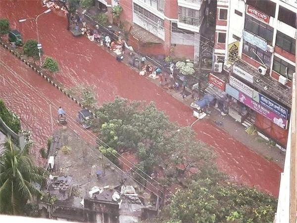 Hoảng hốt trước hình ảnh những con đường ngập trong dòng sông máu