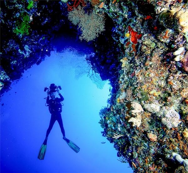 Lặn ngắm san hô - hoạt động ưa thích củadu khách khi đến Bali.