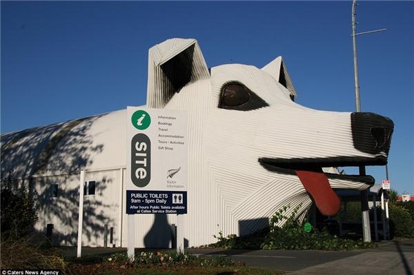 Một tòa nhà mang hình dáng chú chó khác được tìm thấy ởTirau, New Zealand doSteven Clothier thiết kế. Tòa nhà này có chức năng cung cấp thông tin cho khách du lịch đồng thời là nhà vệ sinh công cộng.