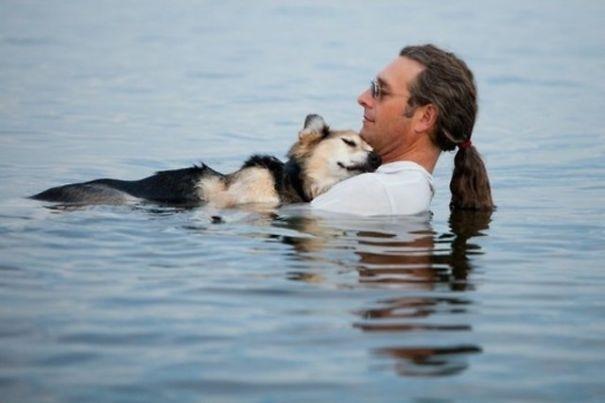 Mỗi ngày, người đàn ông này đều bơi ra hồ và ôm chú chó bị bệnh của mình vào lòng để nước giúp nó xoa dịu những đau đớn trên người.