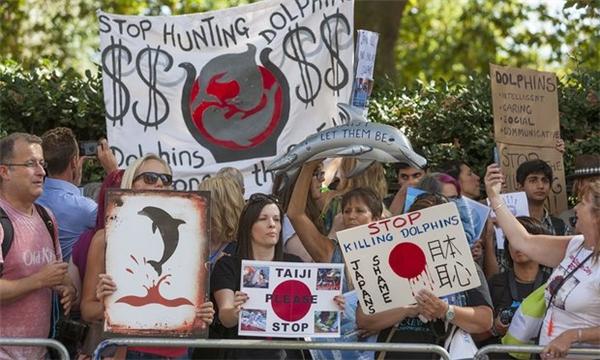 Hành vi săn cá man rợ đã từng dấy lên những làn sóng chỉ trích mạnh mẽ từ khắp nơi trên thế giới.
