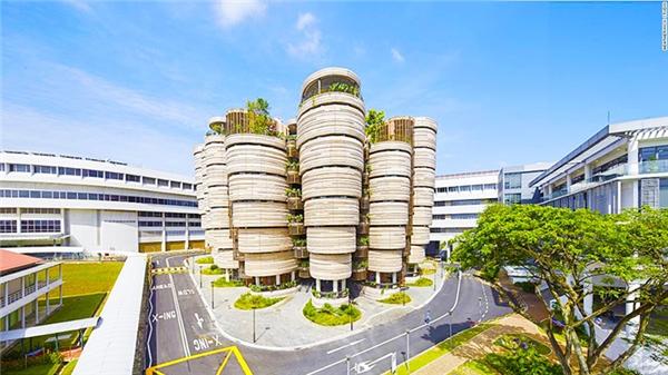 Lối thiết kế sử dụng nhiều đường cong và không tuân theo quy tắc thông thường của khu giảng đường Đại học Công nghệ Nanyang ở Singapore làm tăng tính tương tác giữa sinh viên trong quá trình học đồng thời kích thích khả năng tư duy sáng tạo.