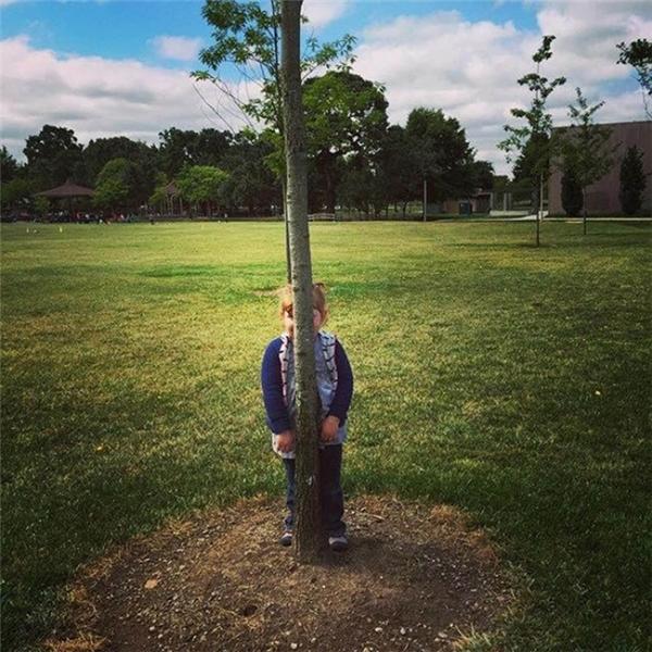 4. Những năm qua, tôi đã từng khóc, đã từng cười, đã từng mất mát, đã từng điên cuồng, đã từng vấp ngã, cũng đã từng mạnh mẽ... Chỉ có điều, chưa bao giờ gầy như cái cây này.