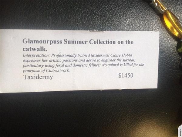 Mô tả sản phẩm khẳng định không có động vật nào bị giết hại để phục vụ cho thiết kế của bà Clares.