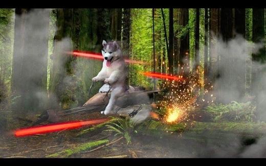 Biểu cảm háo hức của chú chó hoàn toàn hợp với phong cách hành động hoang dã viễn tưởng này.