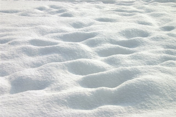 Chính xác, là tuyết đây!(Ảnh: Internet)