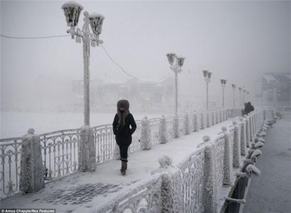 Khắp nơi ởOymyakon đều phủ đầy băng tuyết, mặt đất ở đây vĩnh viễn đóng băng.