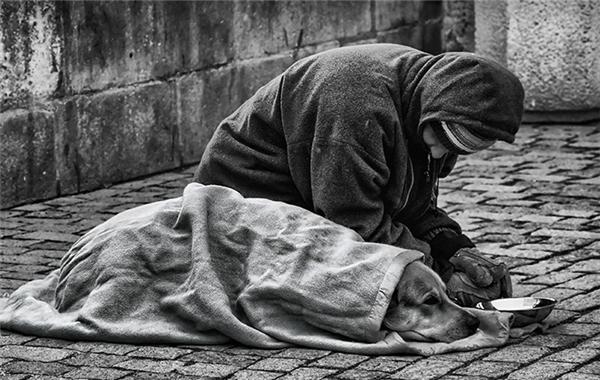 Chỉ khi trải qua gian khổ, đói rét như thế này, chúng ta mới hiểu được rằng hạnh phúc không phải làcuộc sống vật chất đủ đầy mà làcó một người bạn trung thành luôn sát cánh bên ta.