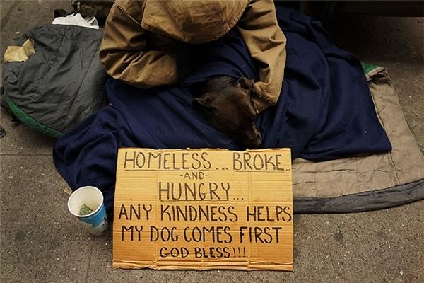 Dù đói khát và lạnh lẽo nhưng người đàn ông này vẫn cầu xin người qua đường giúp đỡ chú chó trước.
