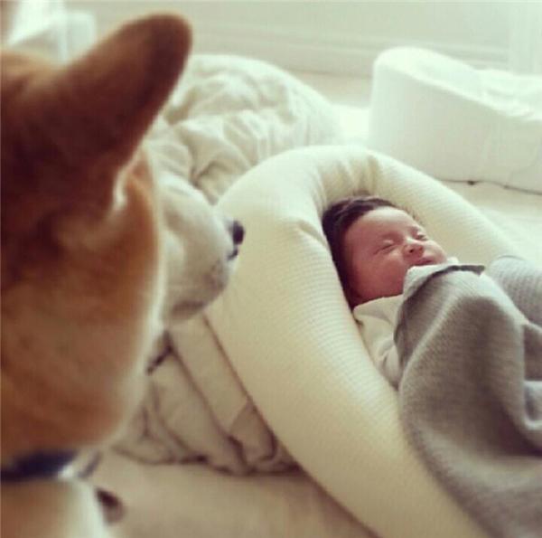 Pomponđã luôn dõi theo Philo ngay từ khi cô bé mới chào đời.