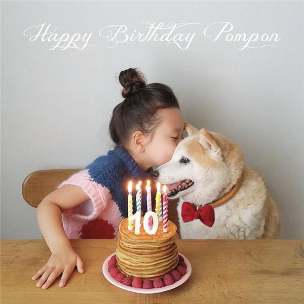 Pomponvừa mới tổ chức sinh nhật mừng tuổi lên 10 vào ngày 18/10.