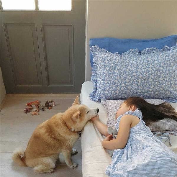 Pomponluôn muốn ở cạnh Philo mọi lúc, khi cô bé vui cũng như khi cô bé buồn thì cậu cũng không muốn rời đi.