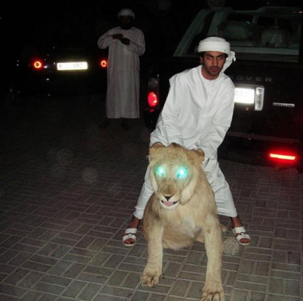 Người ta cưỡi ngựa, cưỡi voi, còn thanh niên Dubai chỉ thích cưỡi hổ.