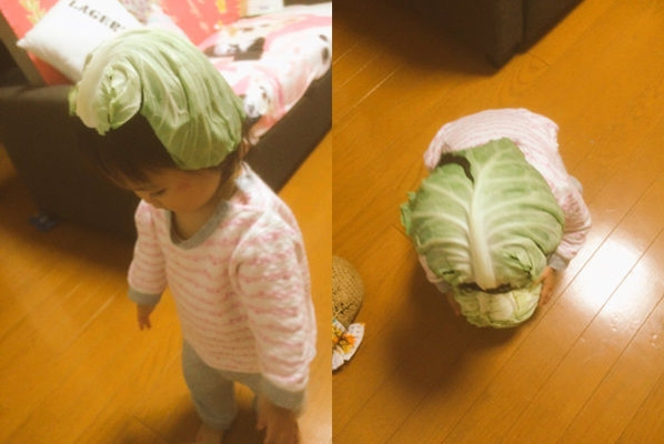 Bức ảnh em bé đội bắp cải gây sốt trên mạng xã hội và trở thành trào lưu tại Nhật Bản.