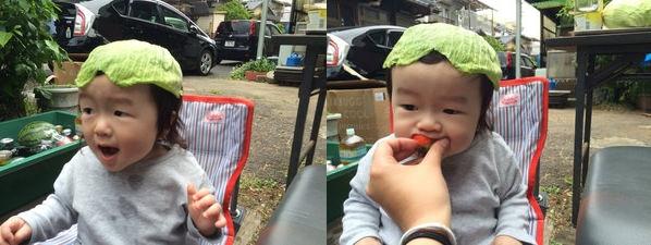 Nhìn các bé trông vô cùng đáng yêu với lá bắp cải trên đầu.