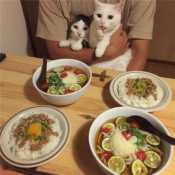 """""""Để em nếm thử xem có ngon không rồi sen cho em ăn hết tômì sen nhá""""."""