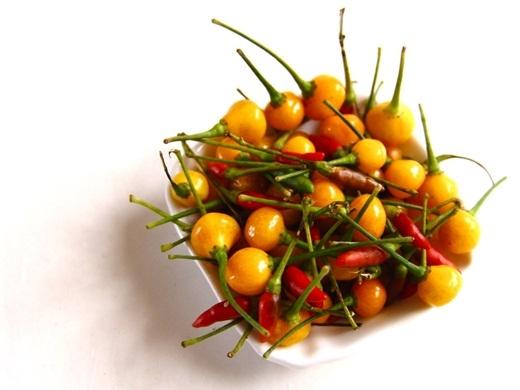 Loại ớt này có vị cựckì cay và được khuyên là không nên ăn tươi.