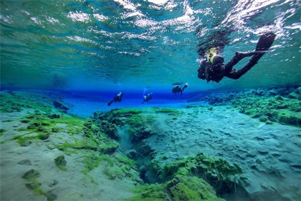 Để lặn sâu xuống dưới đáy, bạn phải có sức khỏe tốt, khả năng chịu đựng cao.