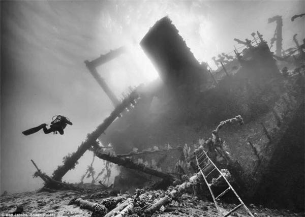 Một thợ lặn tới gần tàn tích của còn tàu nằm sâu dưới đáy biển.