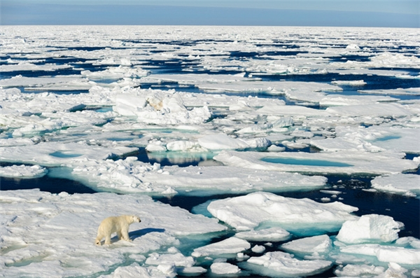 Một điểm truy cập Wi-Fi ở Bắc Cực được lắp đặt thành công vào năm 2005.