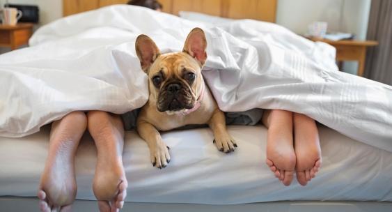 Đàn ông đi ngủ khi đầu óc thực sự mỏi mệt và cơ thể đãsẵn sàng cho giấc ngủ.