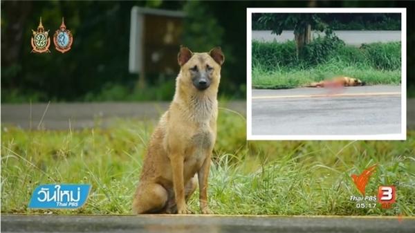 Người dân địa phươngphát hiện được thi thể của Chao Long ven quốc lộ vào cuối tuần qua.