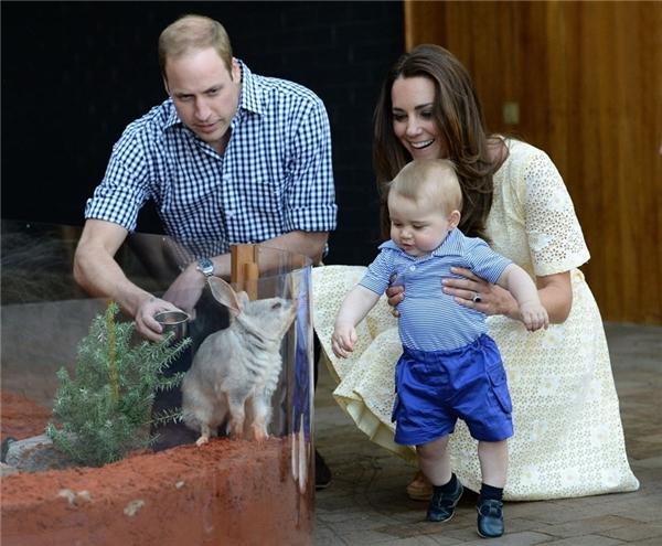 Chiêm ngưỡng thời trang đẹp từ trong trứng của hoàng tử bé nước Anh