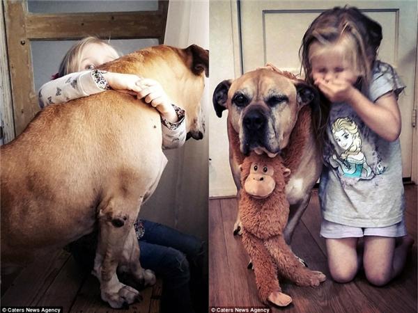 Thắt tim hình ảnh bé gái 6 tuổi vĩnh biệt người bạn chó mù và điếc