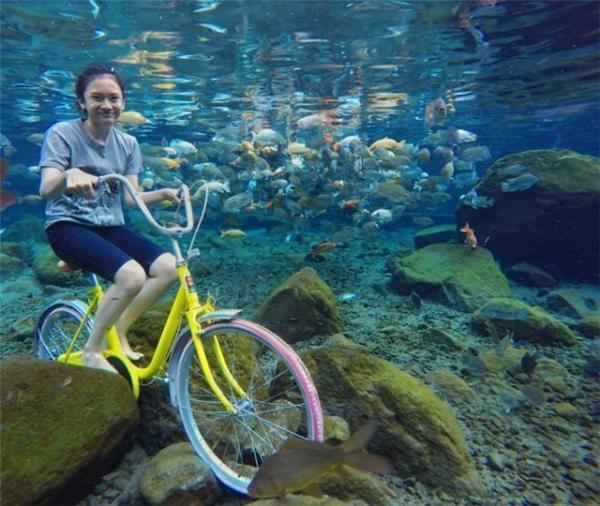 """Không cần đến tàu thuyền, xe đạp vẫn di chuyển """"ngon ơ""""dưới nước đấy thôi."""